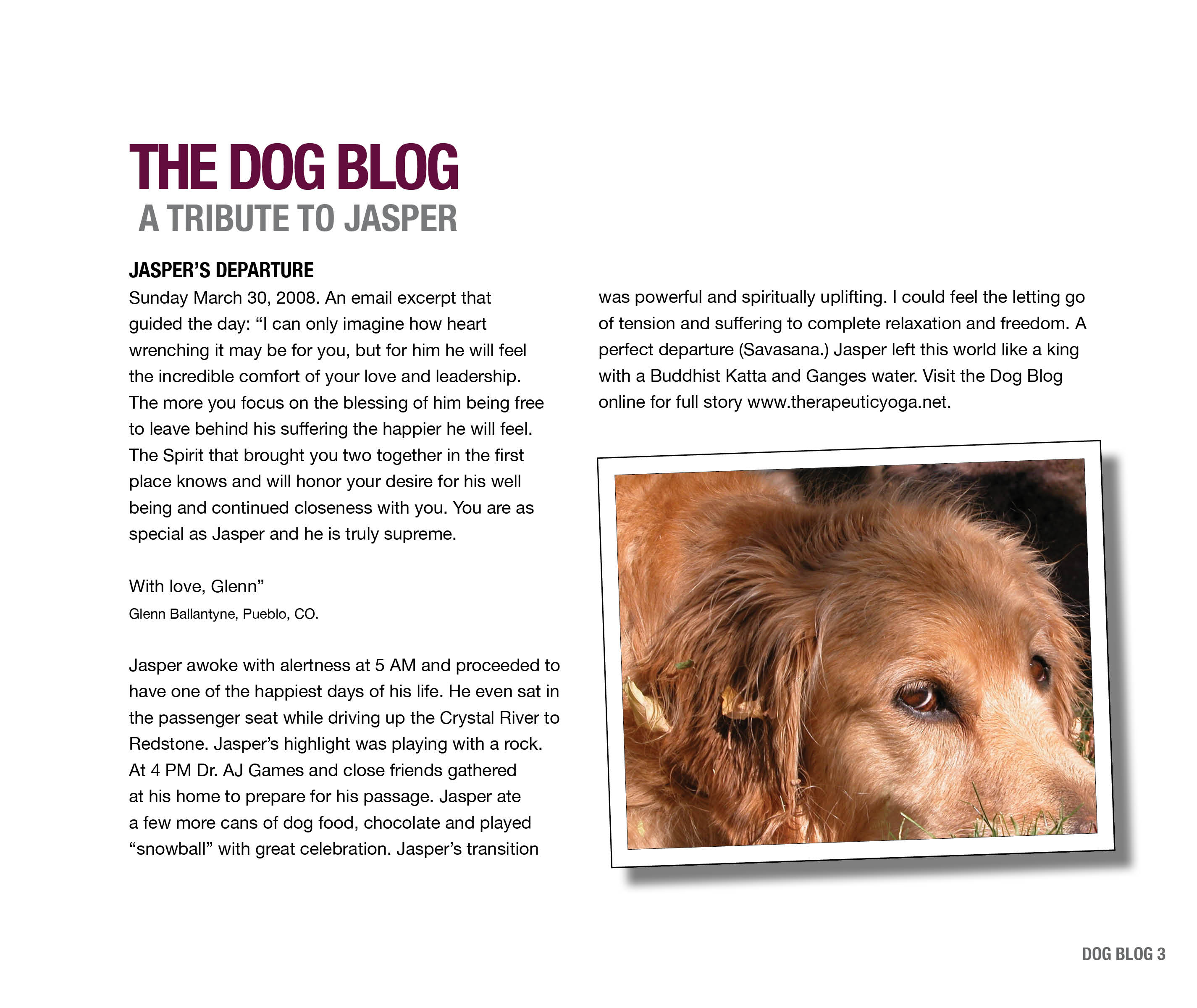 DogBlogPages2